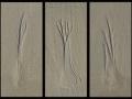 Michael Hilton - Three Trees in the Sand