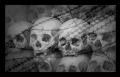 Les Stringer - The Killing Fields
