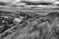 Mary Dolan - Goyt Valley