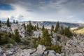 Mary Dolan - Yellowstone Nat. Park