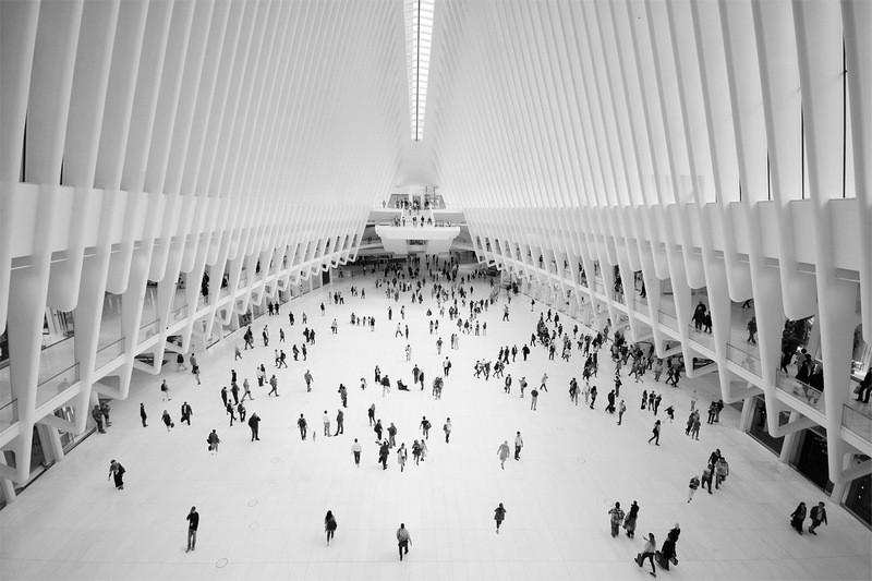 Michael Hilton - The Oculus